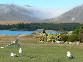 Photo: Lake Tekapo, Mew