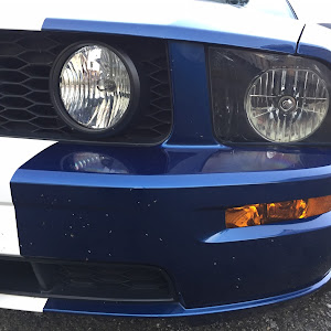 マスタング コンバーチブル  09 GTのカスタム事例画像 PONY-Kさんの2018年10月30日06:37の投稿