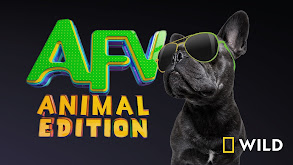 America's Funniest Home Videos: Animal Edition thumbnail