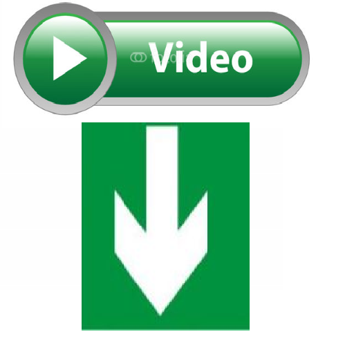 Web Video Download