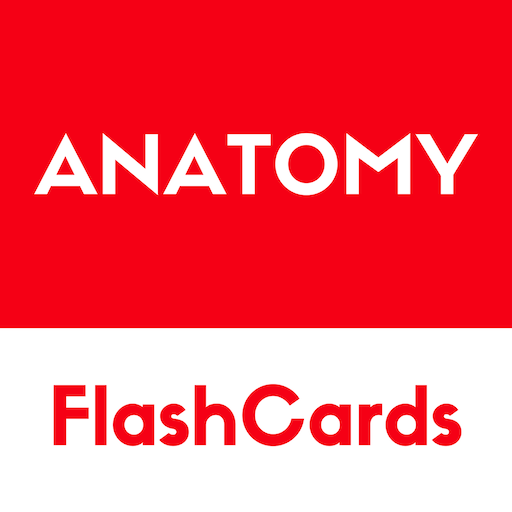 Anatomy - free simple flashcards based reference - Apps en Google Play