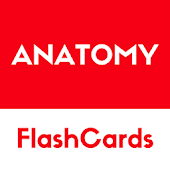 Anatomy -  free simple flashcards based reference