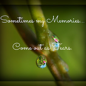Tears by Robert George - Typography Captioned Photos (  )