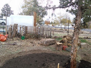 Photo: compost area moved- tree trunk in the front will be another insect hotel