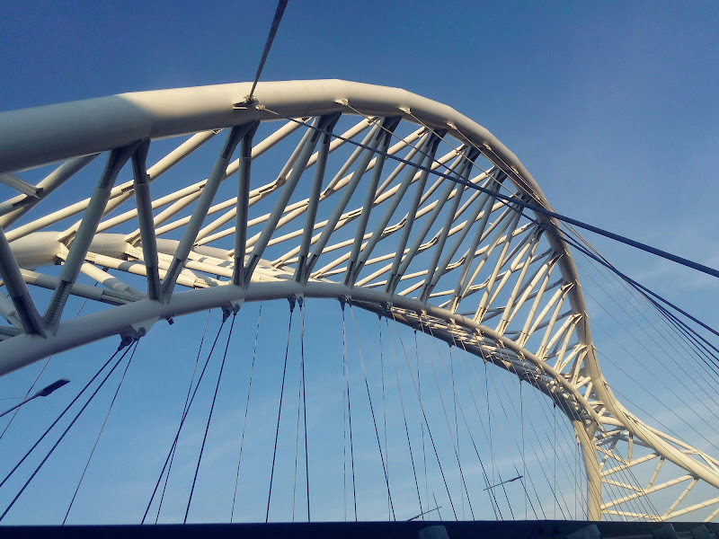 ponte di irina sirbu