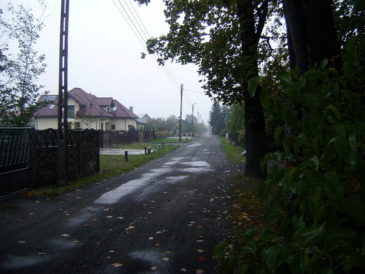 Szatonia