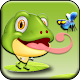 Frog Runner (game)