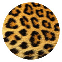 Leopard pattern pop HD new tab page theme