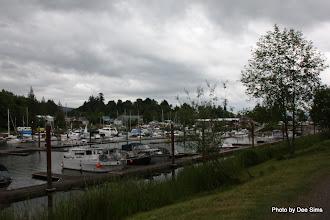 Photo: (Year 2) Day 344 - The Elochman Marina on the Columbia River