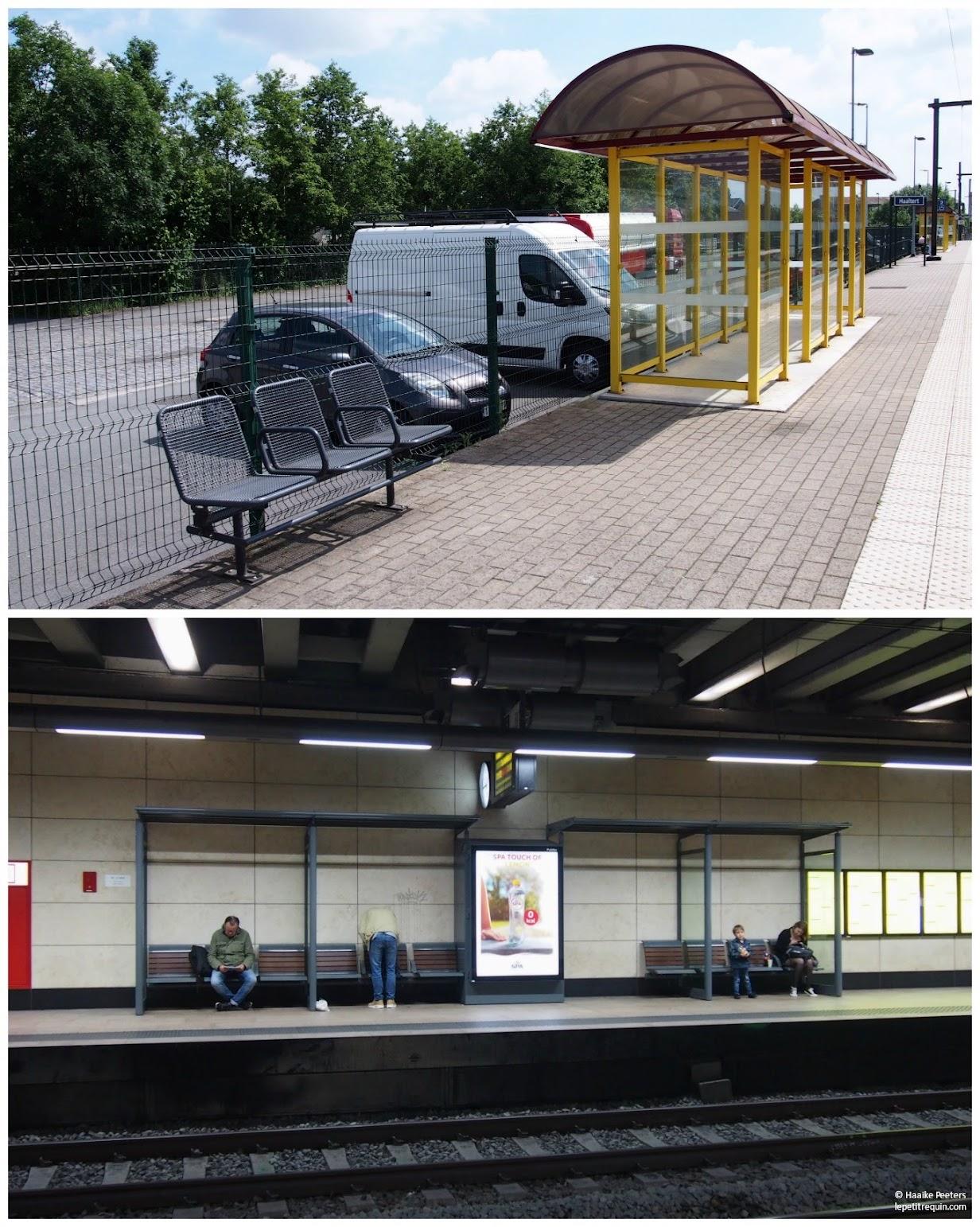 Stations Haaltert & Brussel-Schuman (Le petit requin)
