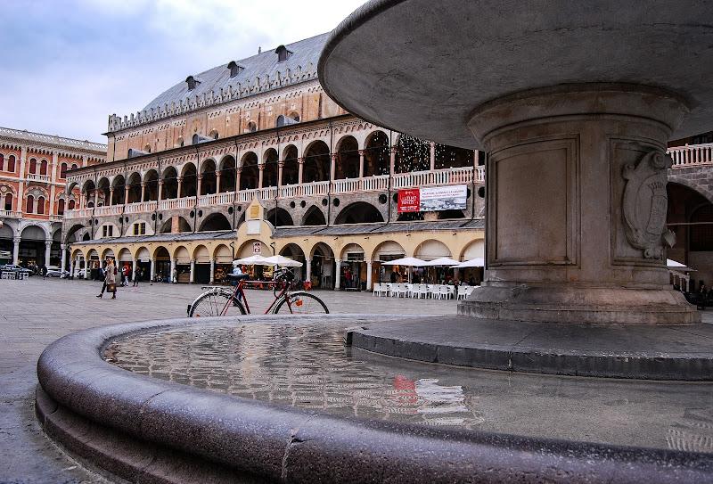 Passeggiando per Padova di rosy_greggio