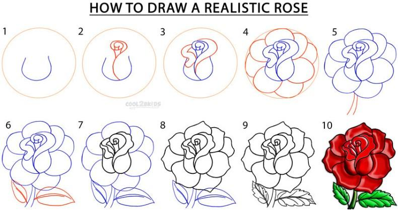 How to draw a rose android apps on google play how to draw a rose screenshot ccuart Image collections