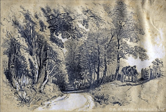 """Photo: Pencil sketch by A. R. Wallace in 18?? entitled """"Near Burford Bridge"""". Copyright The A. R. Wallace Memorial fund."""