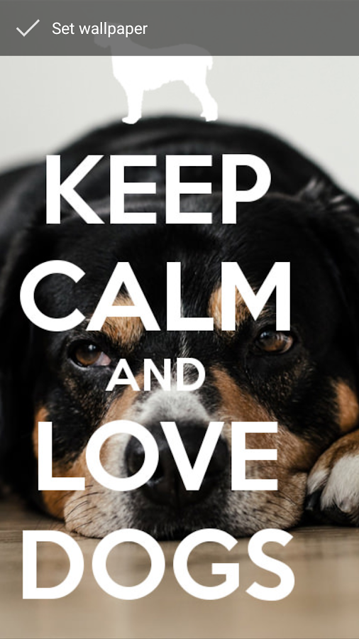 keep calm love dogs wallpapers android apps on google play