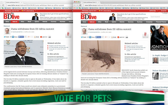 Vote for Pets