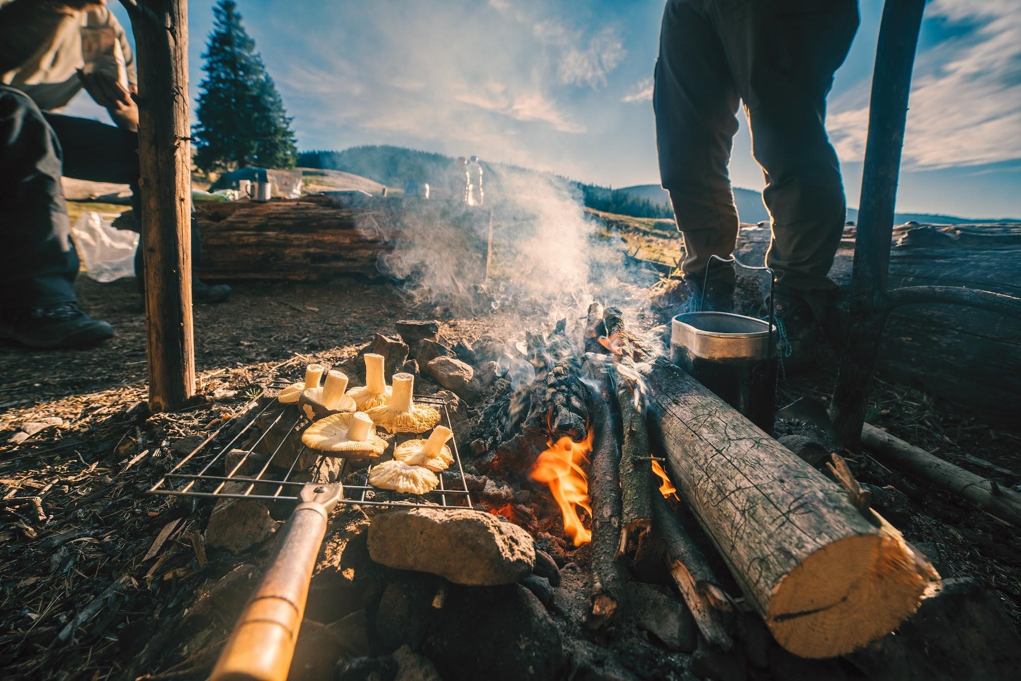 Гриби на вогні