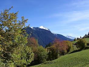 Photo: Stierva - im Herbst