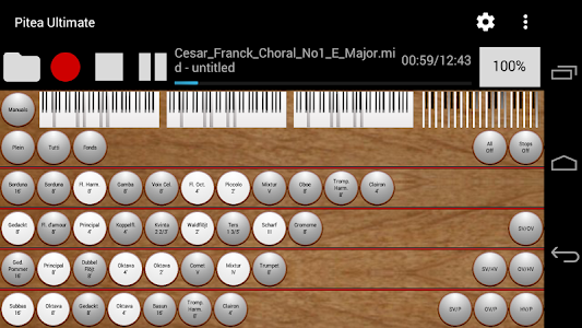 Pitea Ultimate - Church Organ screenshot 2