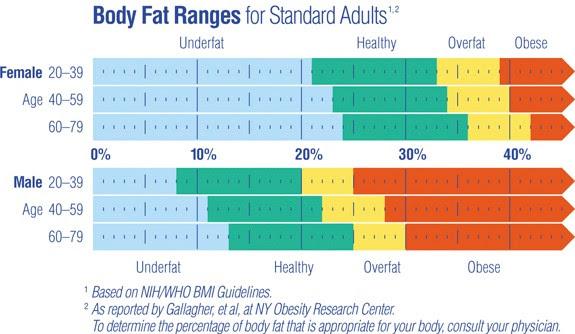 latihan untuk menghilangkan lemak perut | cara membakar lemak perut dengan cepat