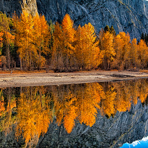 Autumn Reflections.jpg