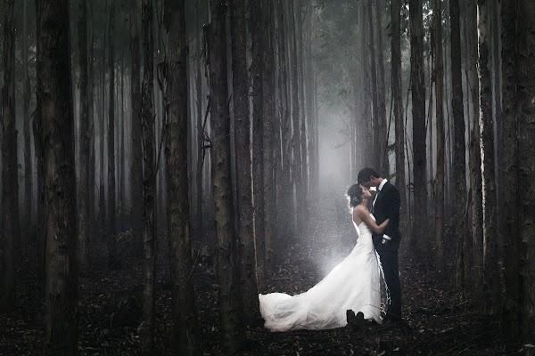 Wedding photographer Daniel West (danielwest). Photo of 17.06.2015