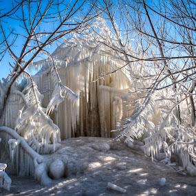 Ice Castle by Brad Bellisle - Nature Up Close Trees & Bushes ( lake michigan, igloo, ice, milwaukee,  )