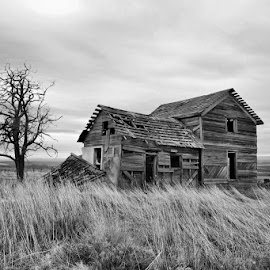 Home by Dave Bower - Black & White Buildings & Architecture