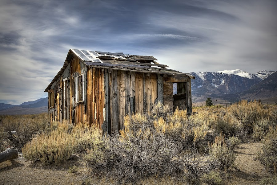 The Cabin by Lee Molof - Buildings & Architecture Decaying & Abandoned