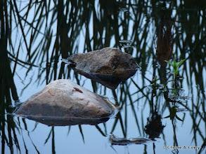 Photo: Moment of Zen - stones