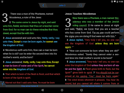 NLT Bible- screenshot thumbnail