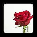 Flower Photo+ icon