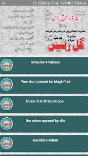 Hazrat Mulana Gull Raees Naqshbandi apk screenshot 2