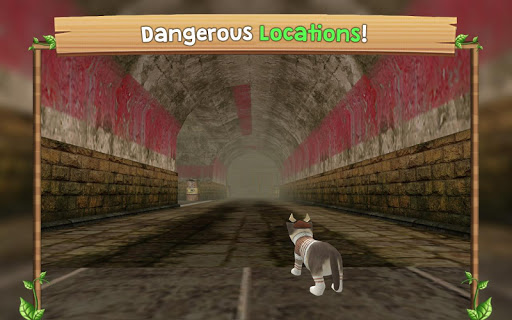 Cat Sim Online: Play with Cats  screenshots 6
