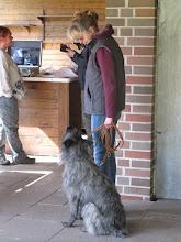 Photo: Lotta wartet geduldig auf die Standardmusterung