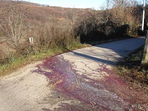 Photo: potoci krvi kao posljedica kolinja