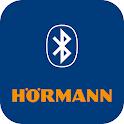 Hörmann BlueSecur icon