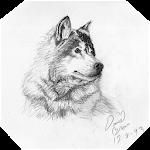Drawing Animals Icon