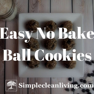 Easy No Bake Ball Cookies