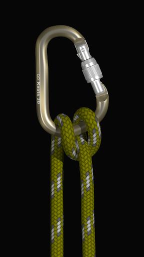 Download Knots 3D MOD APK 3