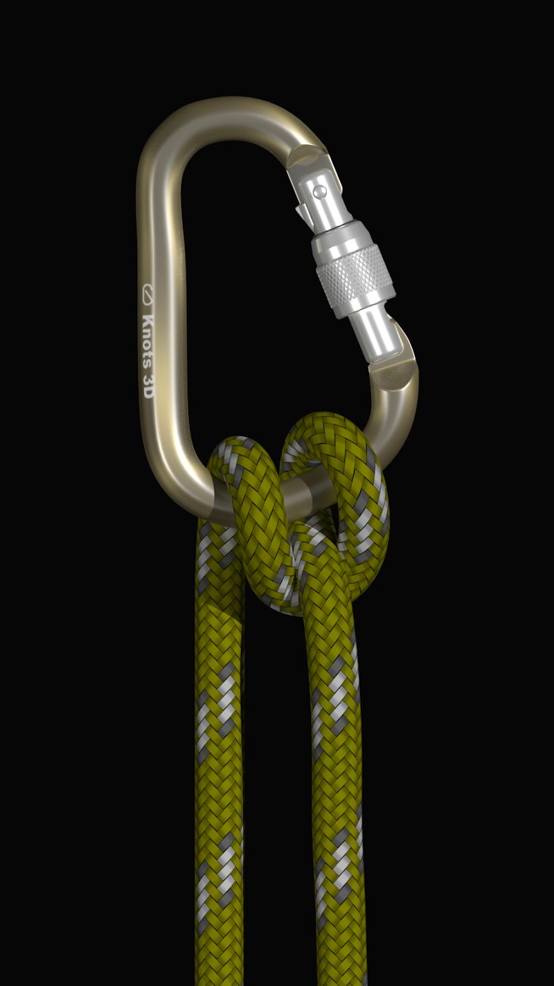 Knots 3D Screenshot 2