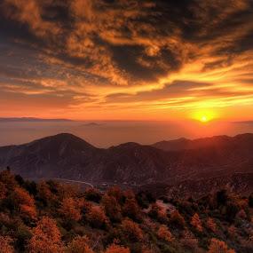 Mountain Sunset by Eddie Yerkish - Landscapes Sunsets & Sunrises ( clouds, orange, mountain, green, california, san bernardino, lake, yellow, landscape, leaves, sun, sky, blue, sunset, trees, big bear, nikon, branches )