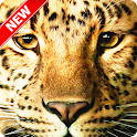 Cool Leopard Wallpaper icon