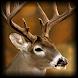 Professional Deer Hunting Calls