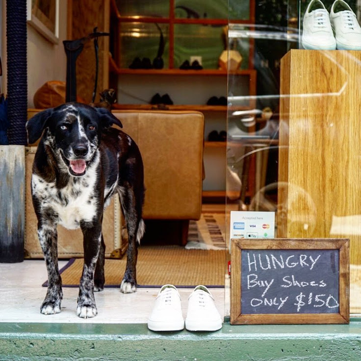 You might see a dog running around the Inkerman boutique. Photo: Inkerman.