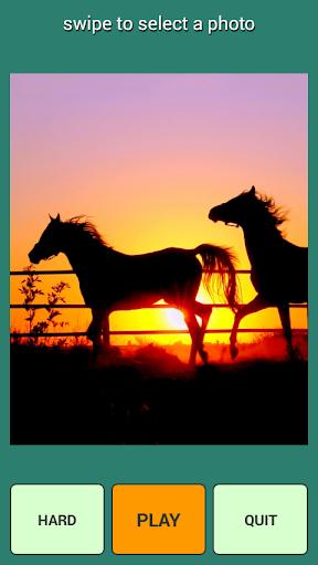馬ゲームの困惑