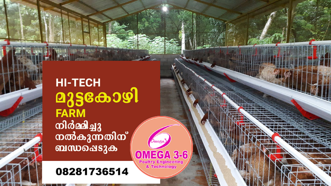 omega 36 poultry farms - Corporate Office in Neyyattinkara