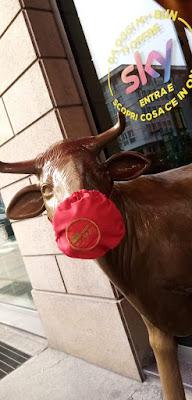 la mucca al tempo del covid