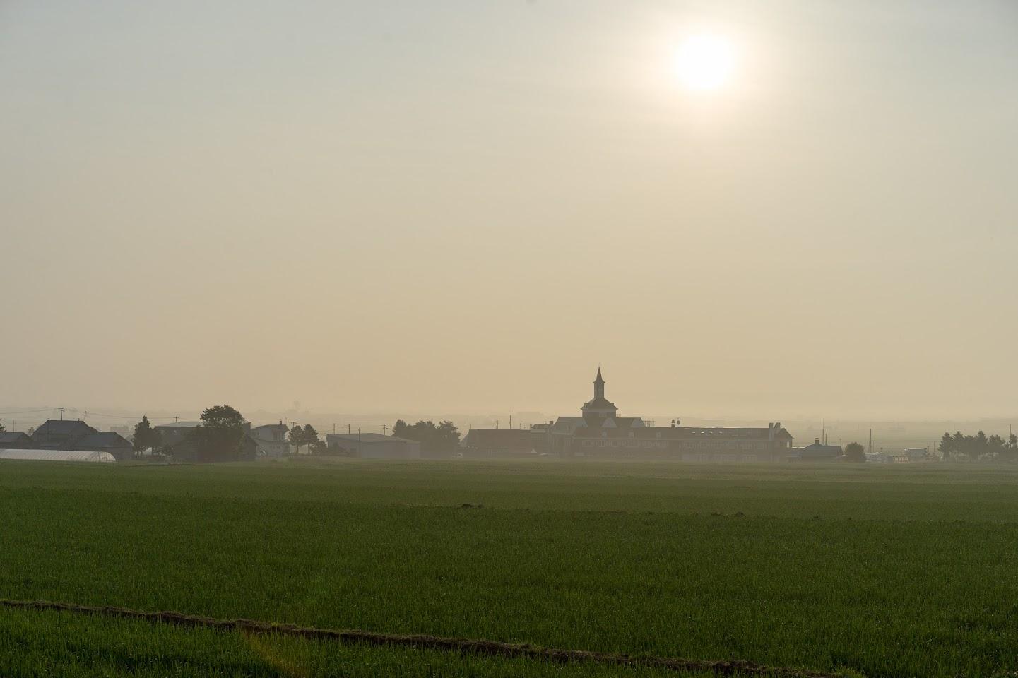 朝霧に包まれたサンフラワーパーク北竜温泉