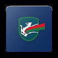 Terni League