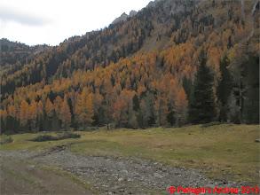 Photo: IMG_4508 autunno dolomitico